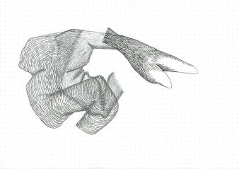 Étude spontanée#13_crayon graphite sur papier pointillé_5cm X 21cm_2015